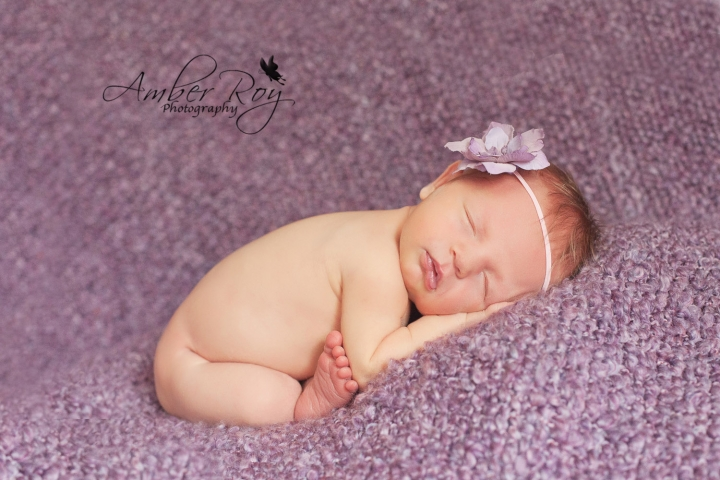 state_college_pa_newborn_photography-3