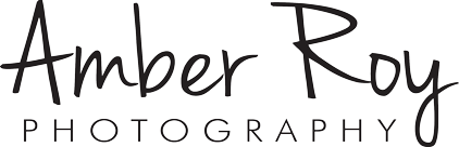 Amber Roy Photography | State College, PA Photographer logo